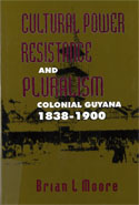 Cultural Power, Resistance, and Pluralism