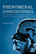 Phenomenal Consciousness