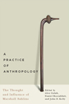 Practice of Anthropology, A